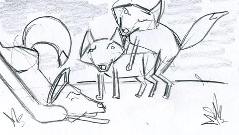 foxes_030